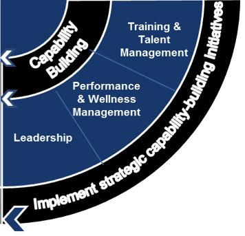 work profiling and competency design course